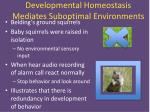 developmental homeostasis mediates suboptimal environments