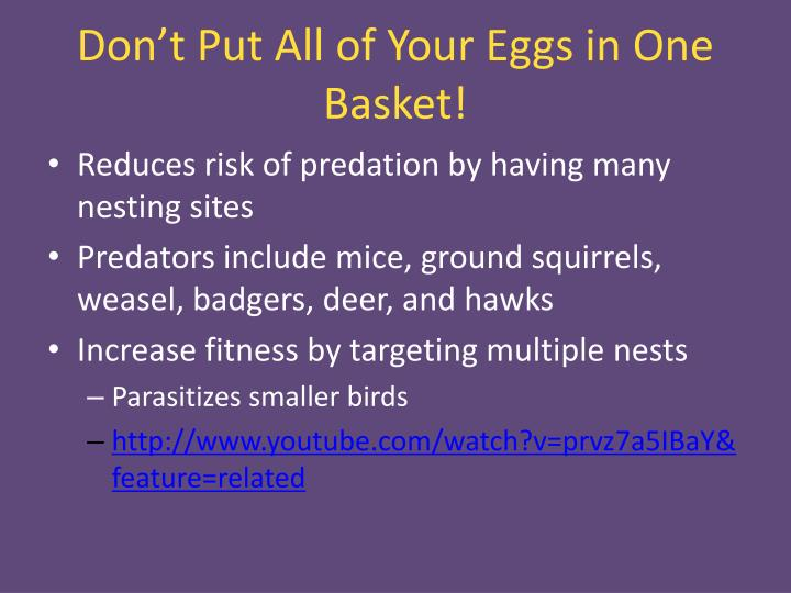 Don't Put All of Your Eggs in One Basket!