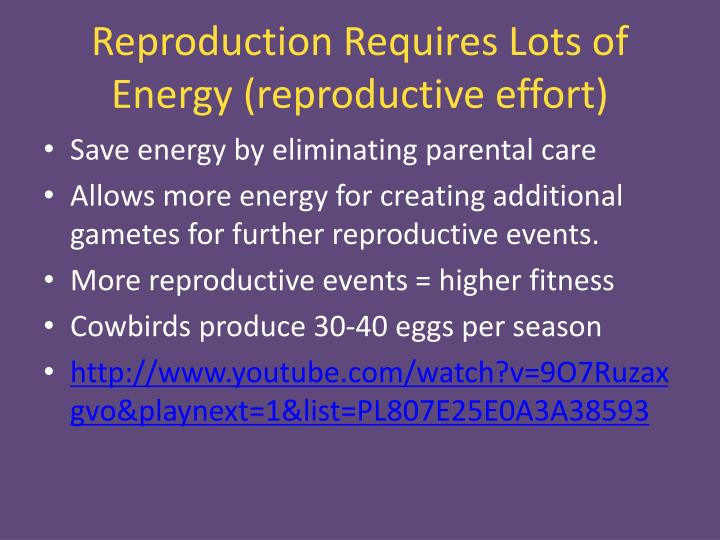 Reproduction Requires Lots of Energy (reproductive effort)