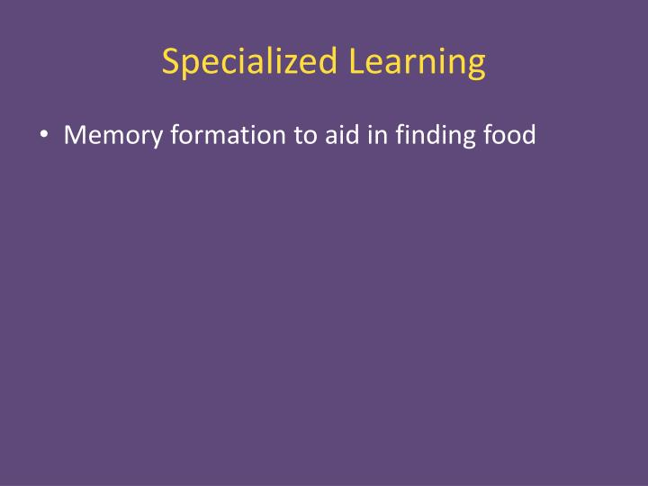 Specialized Learning