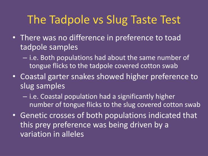 The Tadpole vs Slug Taste Test