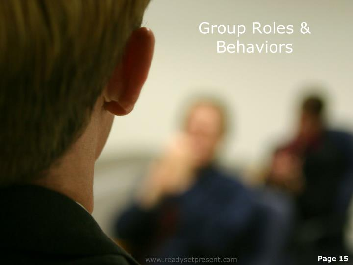 Group Roles & Behaviors