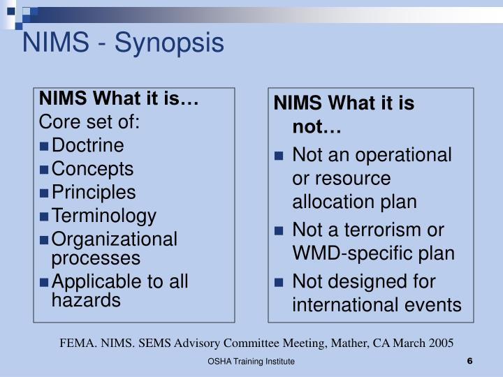 NIMS - Synopsis