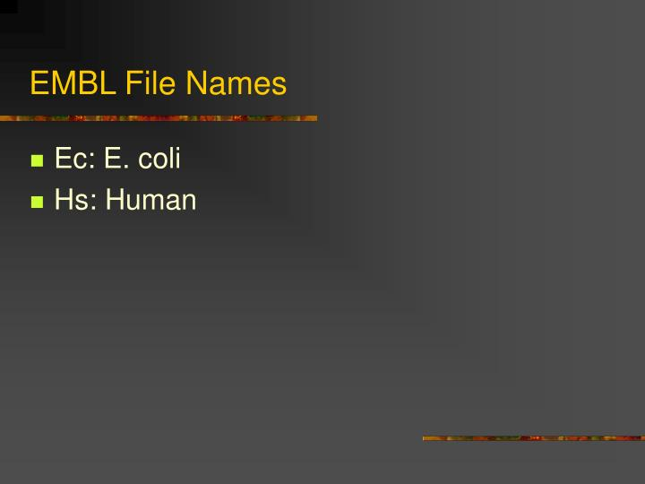 EMBL File Names