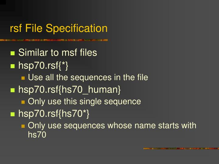 rsf File Specification