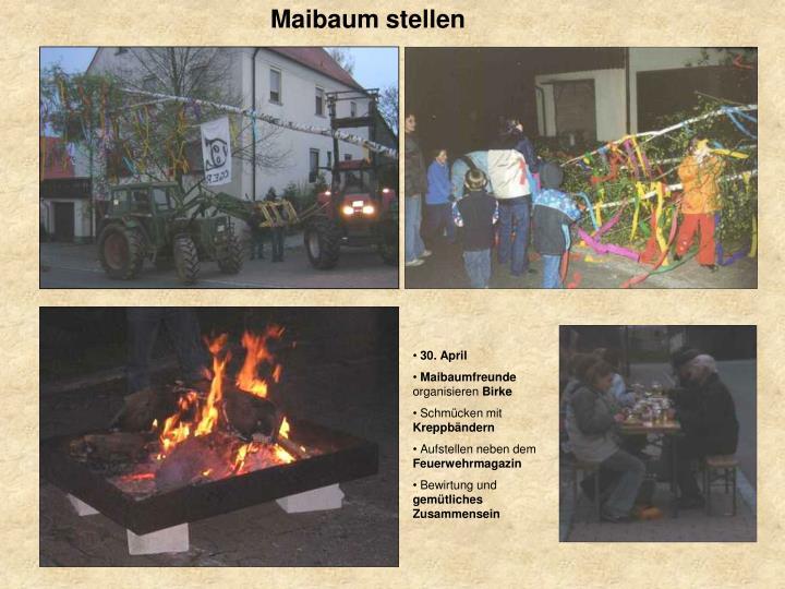 Maibaum stellen