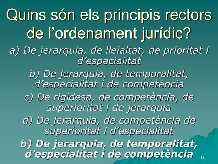 Quins són els principis rectors de l'ordenament jurídic?
