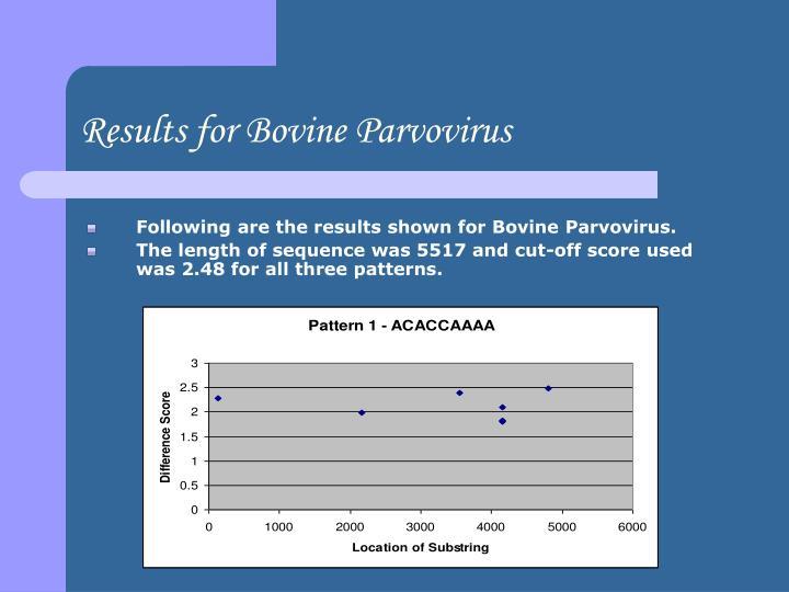 Results for Bovine Parvovirus