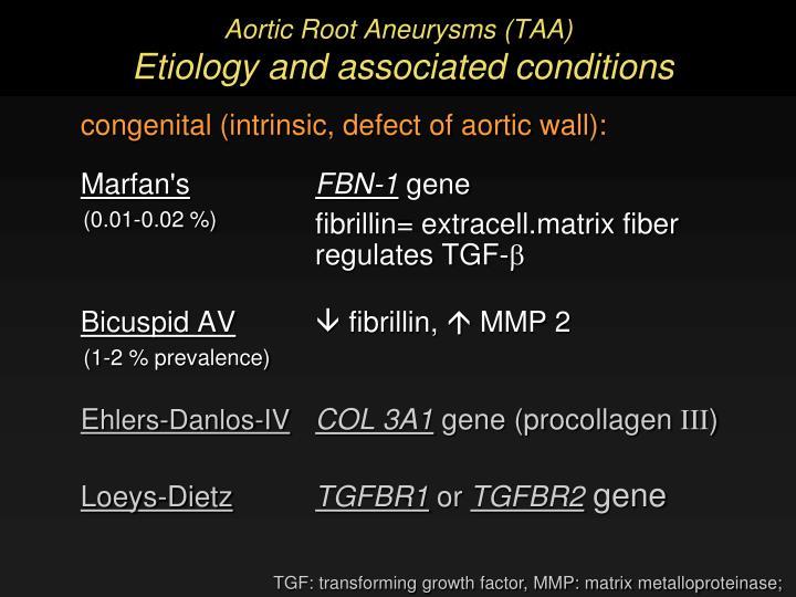 Aortic Root Aneurysms (TAA)