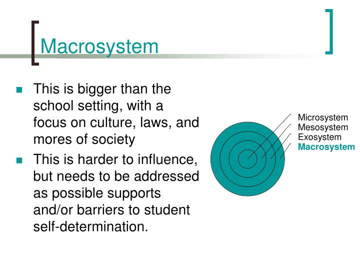 Macrosystem