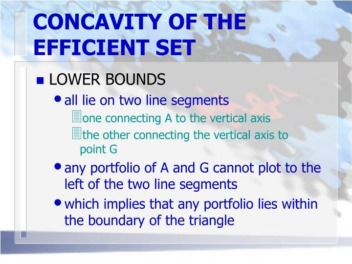 CONCAVITY OF THE EFFICIENT SET