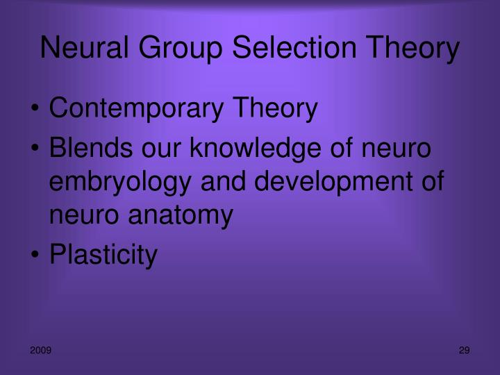 Neural Group Selection Theory