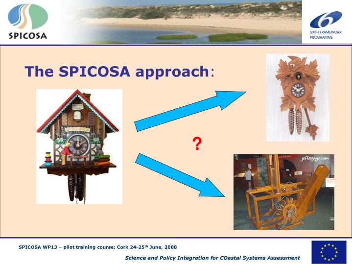 The SPICOSA approach