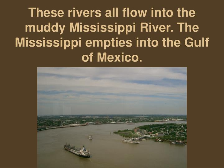These rivers all flow into the muddy Mississippi River. The Mississippi empties into the Gulf of Mexico.