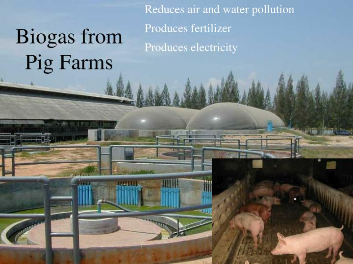 Reduces air and water pollution