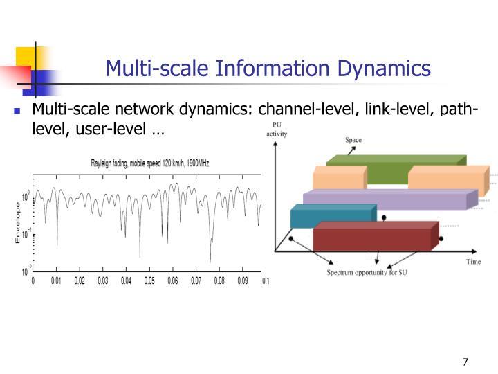 Multi-scale Information Dynamics