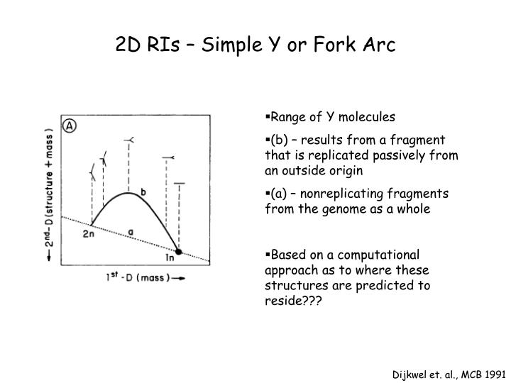 2D RIs – Simple Y or Fork Arc