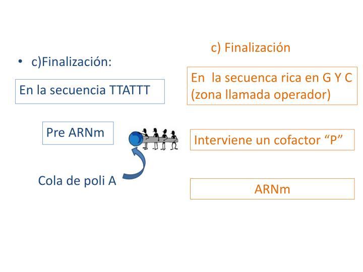c) Finalización