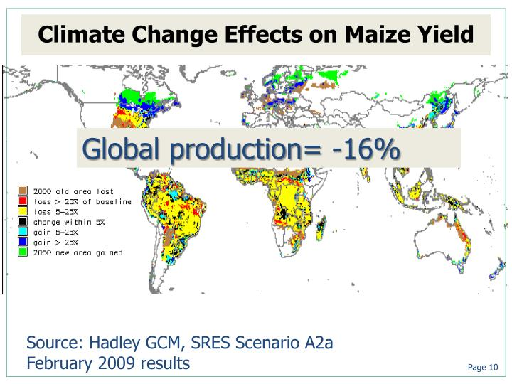 Climate Change Effects on Maize Yield