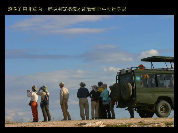 遼闊的東非草原一定要用望遠鏡才能看到野生動物身影