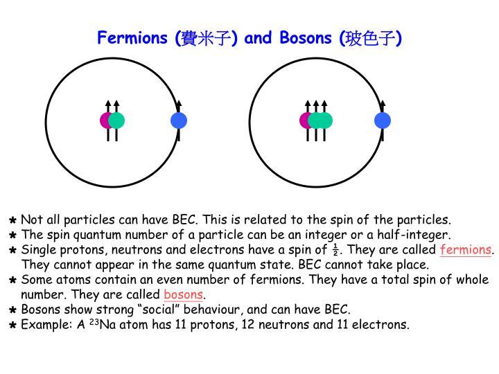 Fermions (