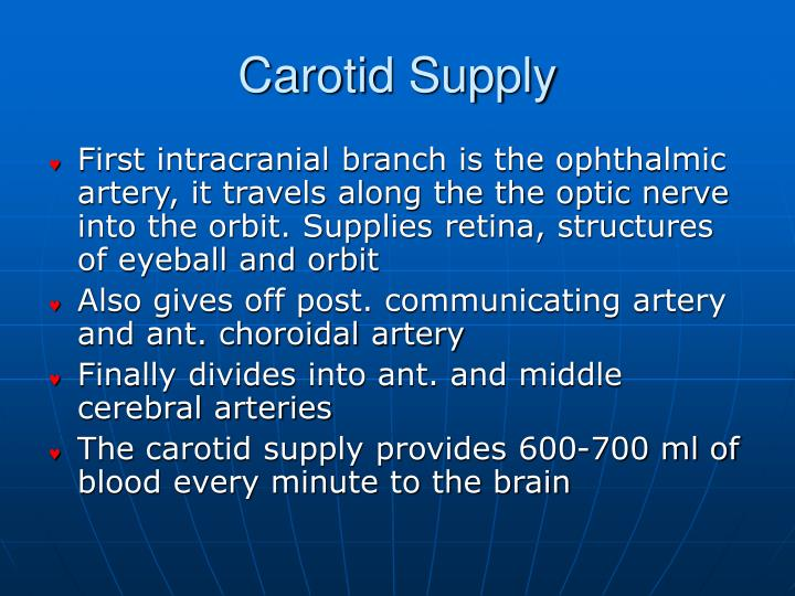 Carotid Supply