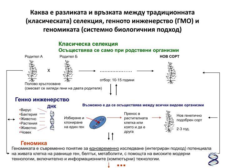 Каква е разликата и връзката между традиционната (класическата) селекция, генното инженерство (ГМО) и геномиката (системно биологичния подход)