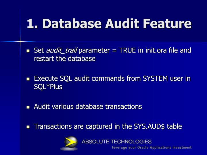 1. Database Audit Feature