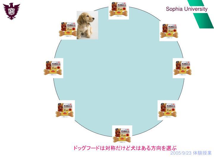 ドッグフードは対称だけど犬はある方向を選ぶ