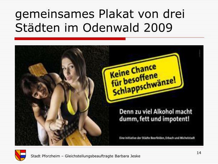 gemeinsames Plakat von drei Städten im Odenwald 2009