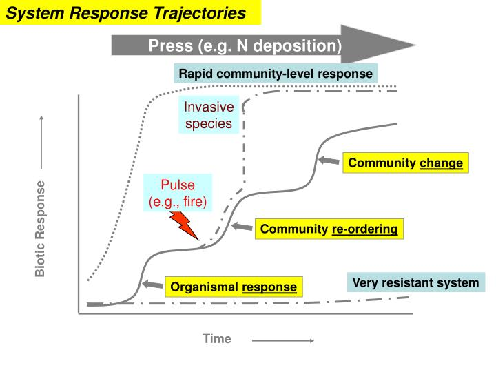 System Response Trajectories