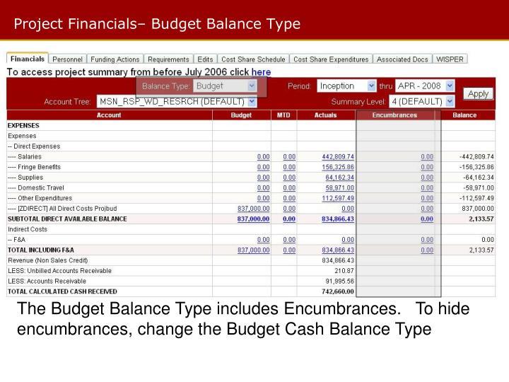 Project Financials– Budget Balance Type