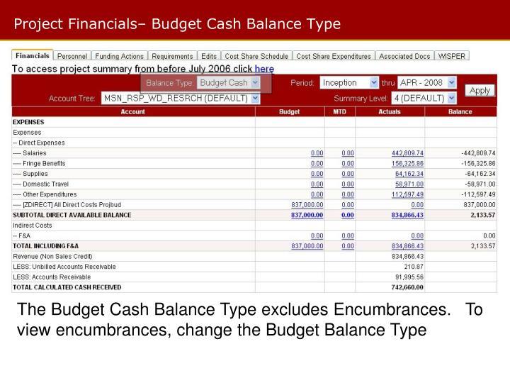 Project Financials– Budget Cash Balance Type