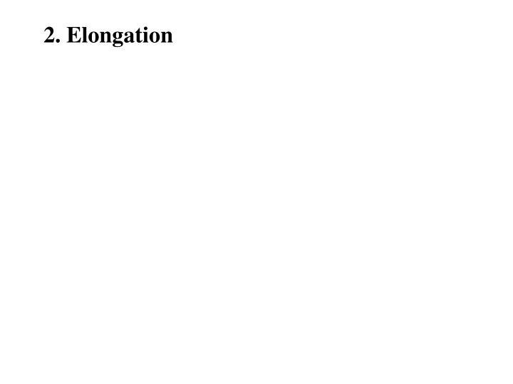 2. Elongation