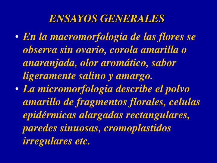 ENSAYOS GENERALES