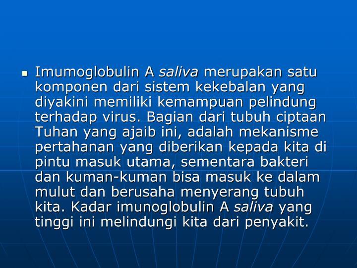 Imumoglobulin A