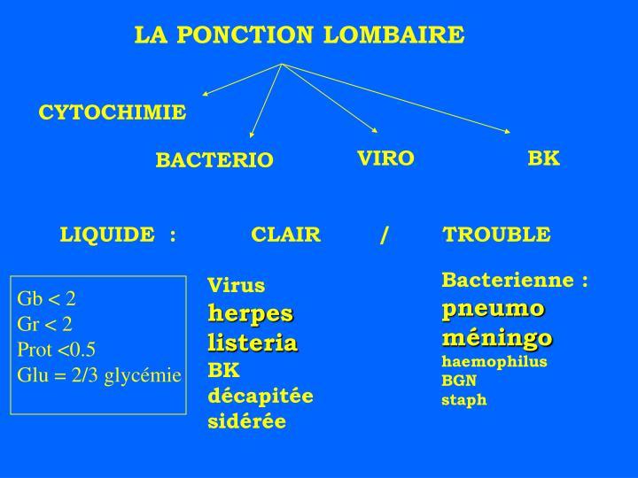 LA PONCTION LOMBAIRE