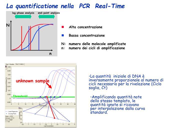 log-phase analysis