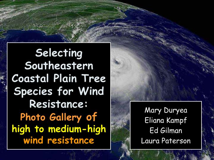 Selecting Southeastern Coastal Plain Tree Species for Wind Resistance: