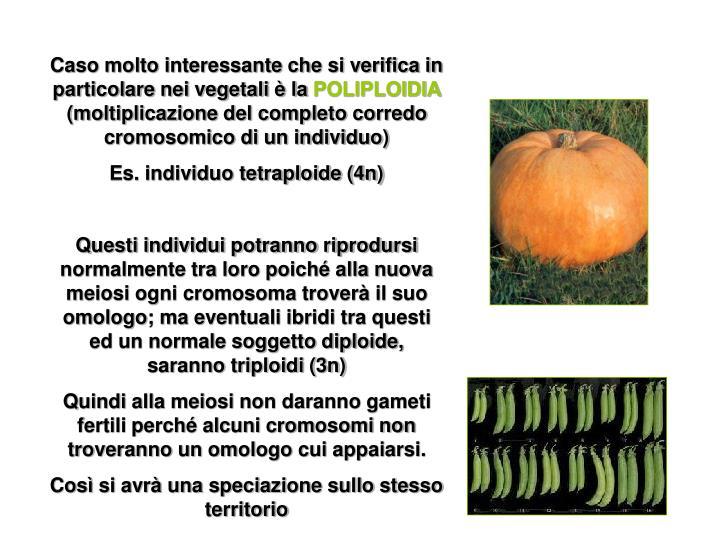 Caso molto interessante che si verifica in particolare nei vegetali è la