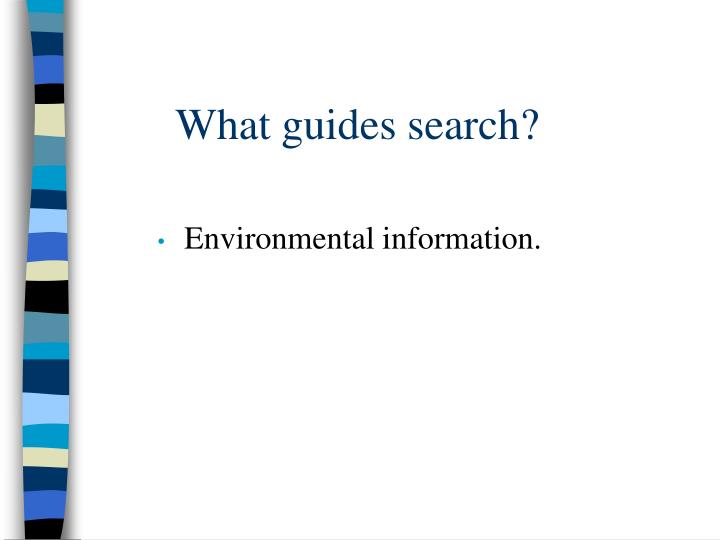 What guides search?