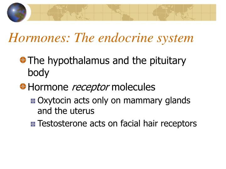 Hormones: The endocrine system
