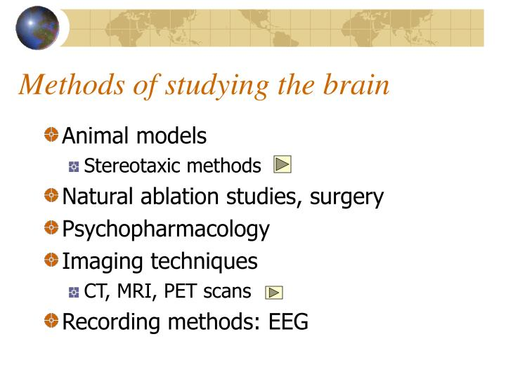 Methods of studying the brain