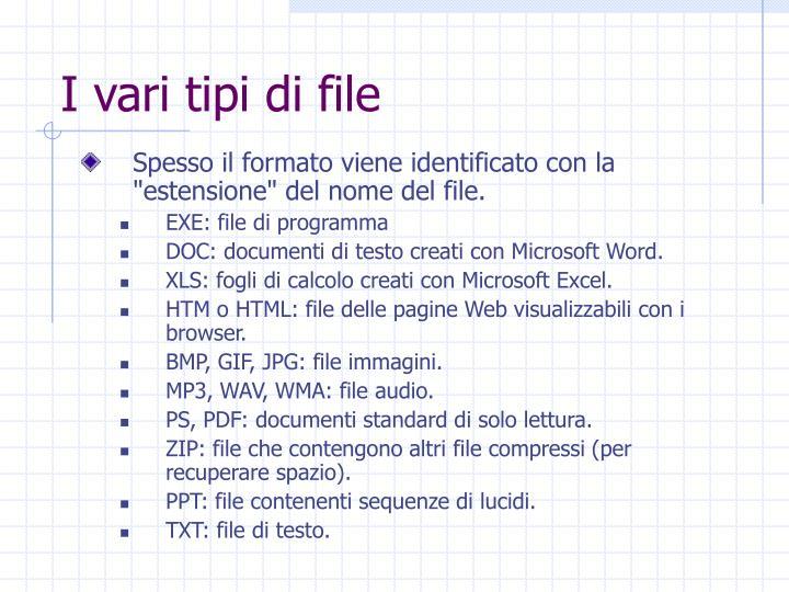 I vari tipi di file