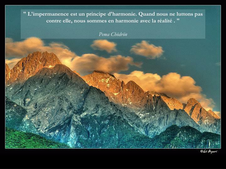""""""" L'impermanence est un principe d'harmonie. Quand nous ne luttons pas contre elle, nous sommes en harmonie avec la réalité . """""""