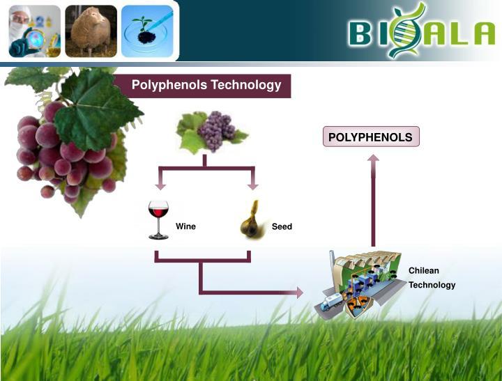Polyphenols Technology