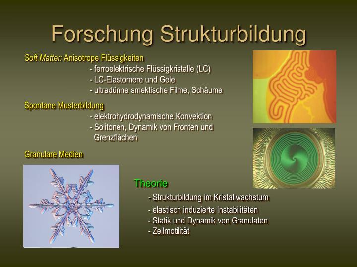 Forschung Strukturbildung