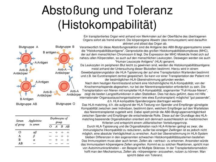Abstoßung und Toleranz (Histokompabilität)