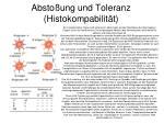 absto ung und toleranz histokompabilit t