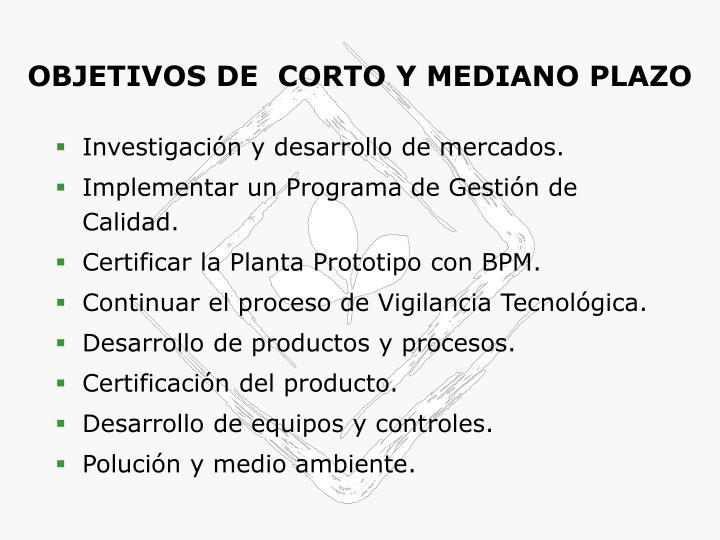 OBJETIVOS DE  CORTO Y MEDIANO PLAZO